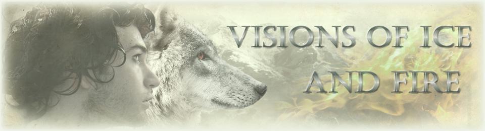 VisionSOIAF